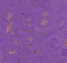 "Thailand Thai Mango Purple, 25"" x 37"" Limited Available"