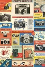 "Italy Cavallini Print, Camera Vintage, 20"" x 28"""
