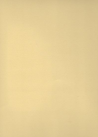 """Italy Fabriano Tiziano #4, Sahara, 20"""" x 26"""" 160g"""