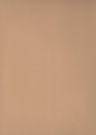 """Fabriano Tiziano #6, Tan, 20"""" x 26"""" 160g"""