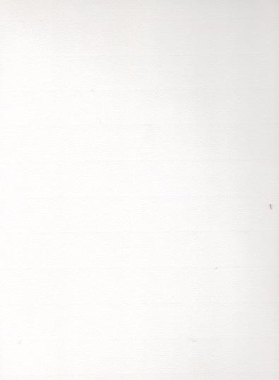 """Fabriano Ingres, Heavyweight, #721, White, 27"""" x 39"""""""