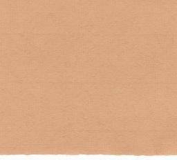 "Germany Ingres Antique, #115, Tangerine, 19"" x 25""  100gsm"