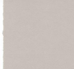 "Germany Ingres Antique, #117, Silver Gray, 19"" x 25""  100gsm"