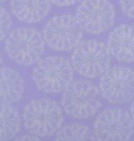 "Japan Japanese Bachelor Buttons Lavender, 21"" x 31"""