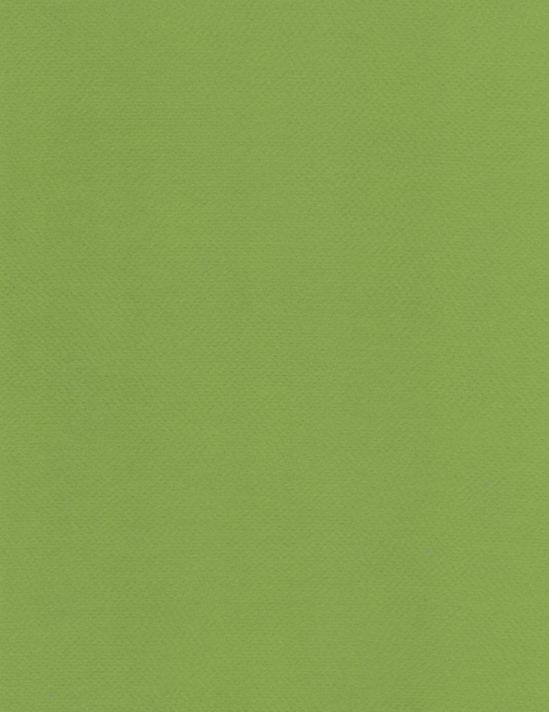 """Fabriano Tiziano #43, Pistachio, 20"""" x 26"""" 160g"""