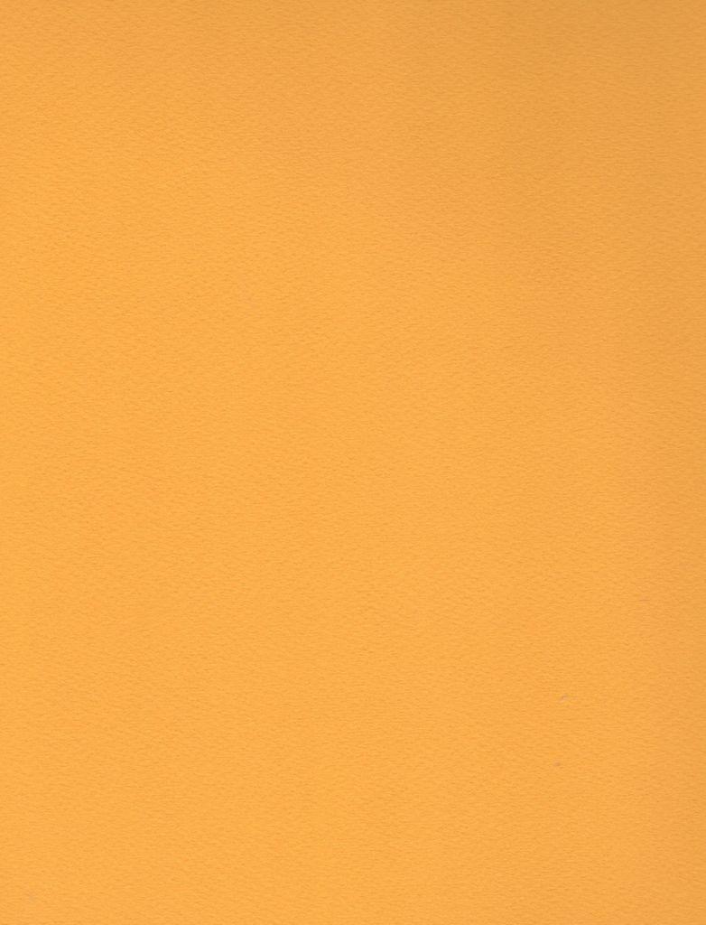 """Fabriano Tiziano #44, Gold, 20"""" x 26"""" 160g"""