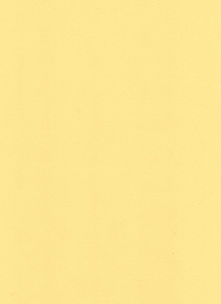 """Fabriano Tiziano #5, Honey, 20"""" x 26"""" 160g"""