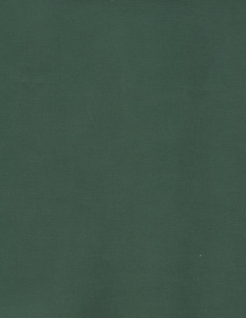 "France Green, Book Cloth, Superior, 17"" x 26"", 2 sheets"