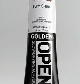 Golden OPEN, Acrylic Paint, Burnt Sienna, Series 1, Tube (2fl.oz.)