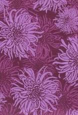 "India Laurelai Chrysanthemum on Purple, 20"" x 28"""
