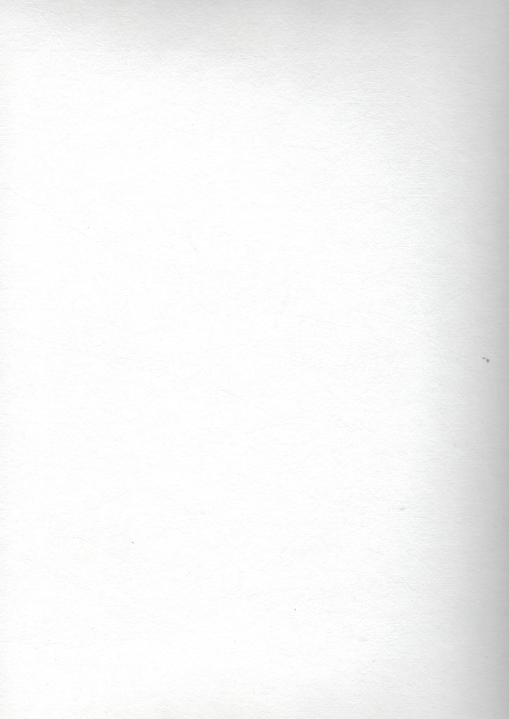 """Domestic Evolon AP Roll, 168 gsm, 80"""" x 10 yd"""