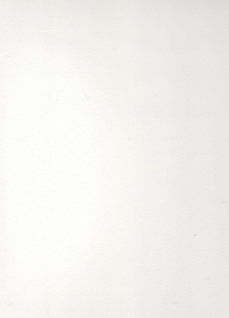 """Italy Revere Felt Polar White 22"""" x 30"""", 250gr."""