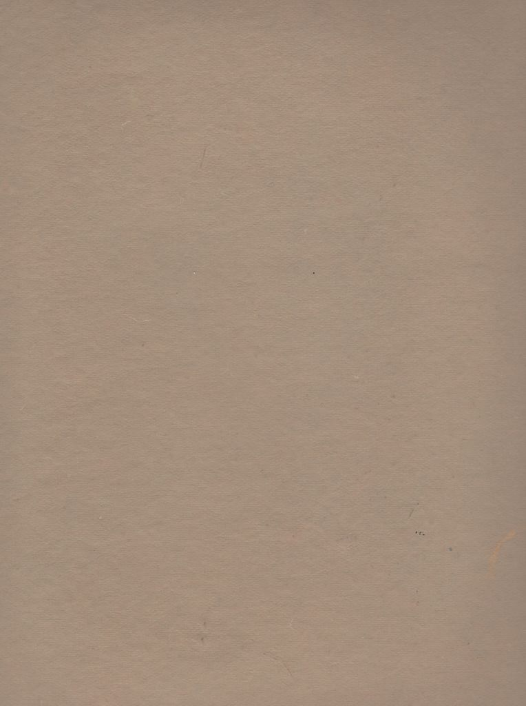 "India Pastel Paper Tan, 19"" x 25"""