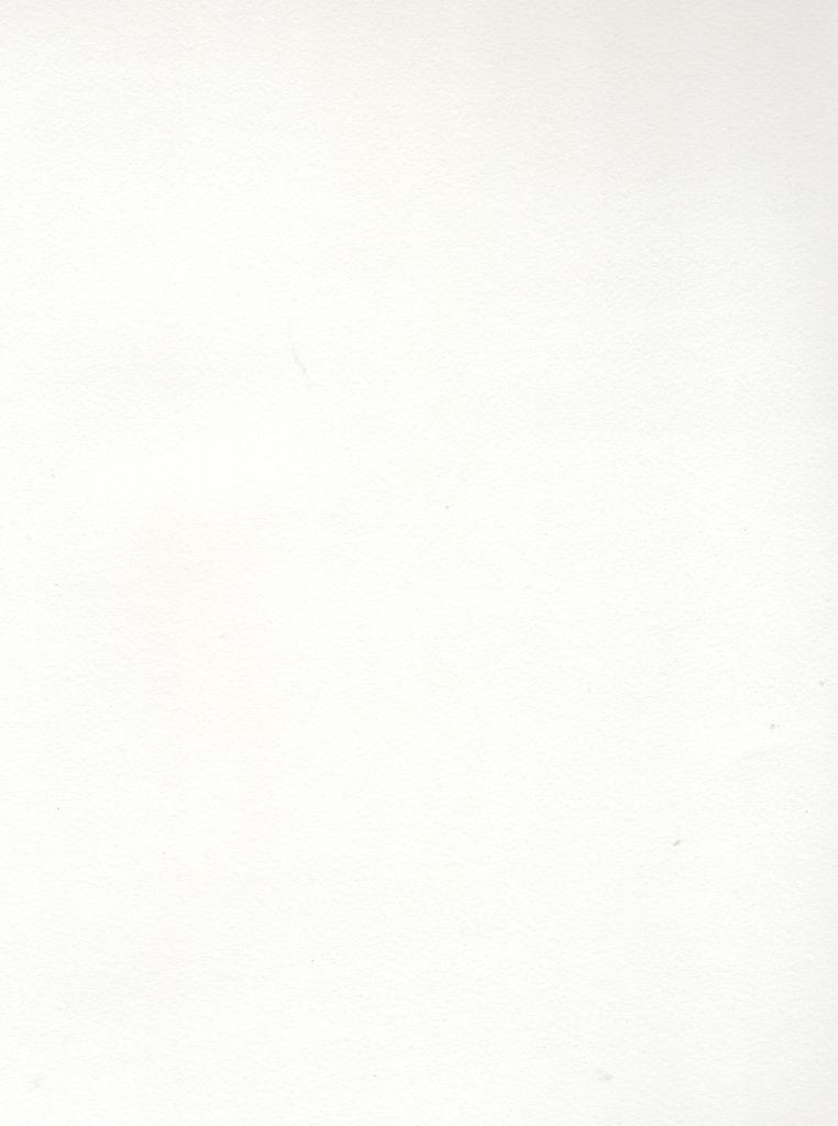 """Italy Revere Felt Standard White, 250gr., 22"""" x 30"""", 250 gr."""