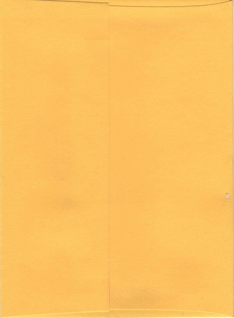 "Sorbet Envelope, Lemon Yellow, A7, 5"" x 7"""