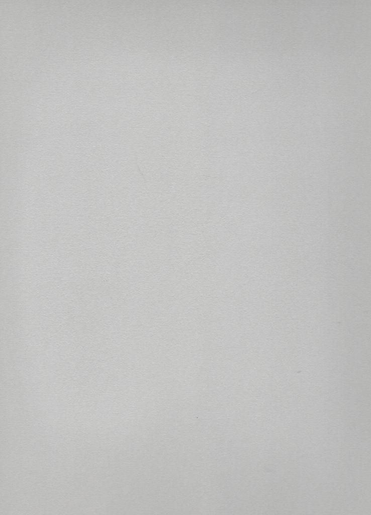 "Domestic Stonehenge Steel Grey, 22"" x 30"", 250gr."