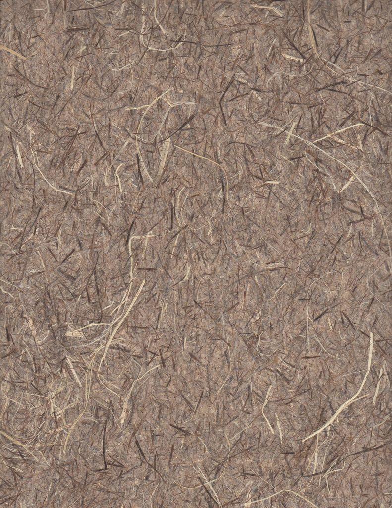 "Thailand Pine Tree Fibers, Natural, 25"" x 37"""