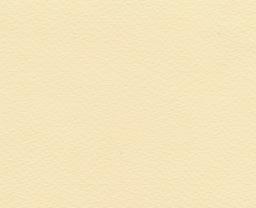 """Fabriano Fabriano Tiziano #3, Banana, 20"""" x 26"""" 160g"""