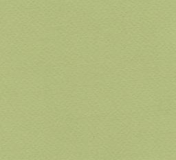 """Italy Fabriano Tiziano #11, Light Green, 20"""" x 26"""" 160g"""