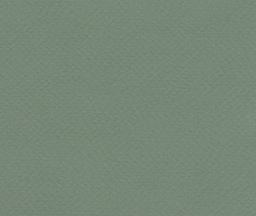 """Fabriano Tiziano #13, Sage, 20"""" x 26"""" 160g"""