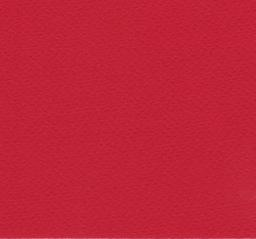 "Italy Fabriano Tiziano #22, Red, 20"" x 26"" 160g"