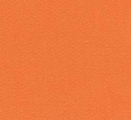 "Italy Fabriano Tiziano #21, Orange, 20"" x 26"" 160g"
