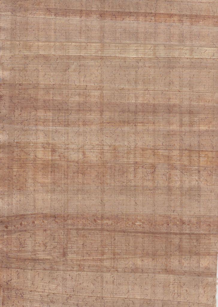 """Egypt Papyrus Medium, 8"""" x 12"""""""