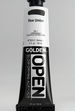 Golden OPEN, Acrylic Paint, Raw Umber, Series 1, Tube (2fl.oz.)