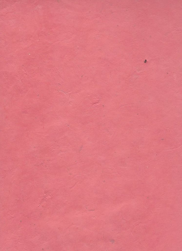 nepal lokta salmon pink 20 x 30 dolphin papers