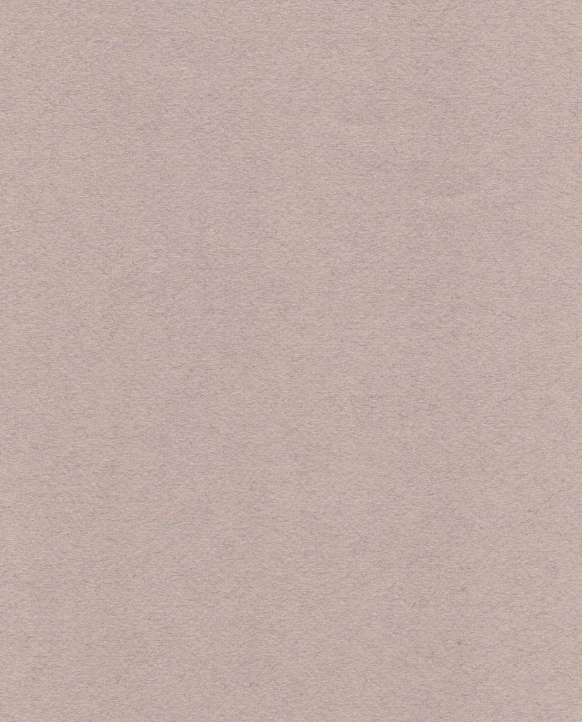 """Italy Fabriano Tiziano #27, Rose Gray, 20"""" x 26"""""""