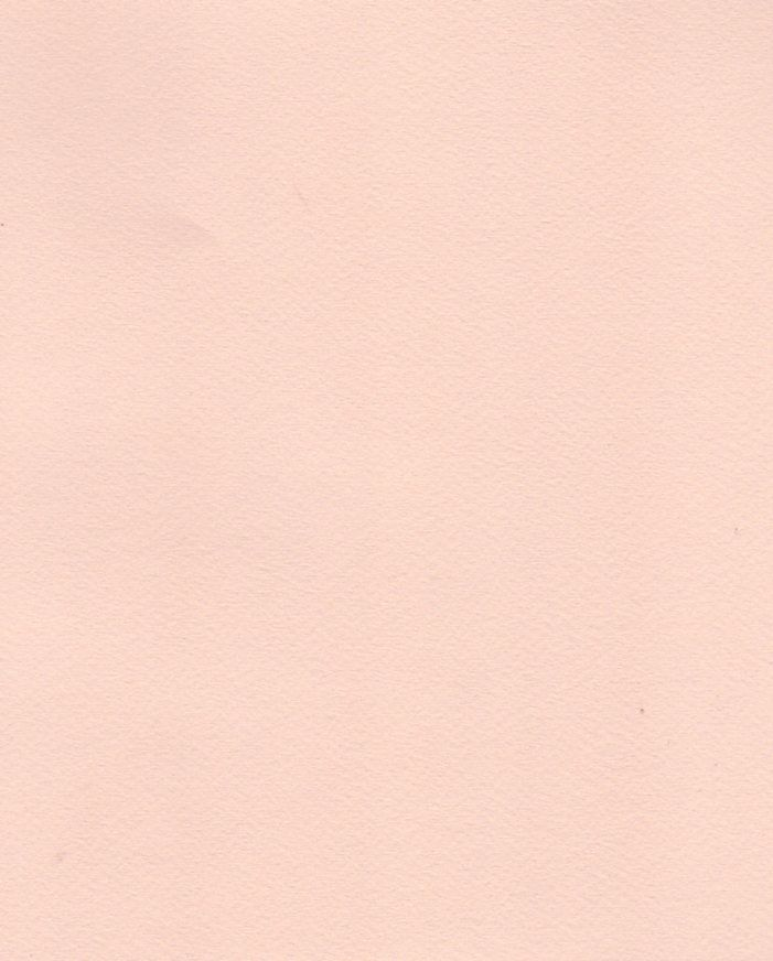 """Italy Fabriano Tiziano #25, Rose, 20"""" x 26"""""""