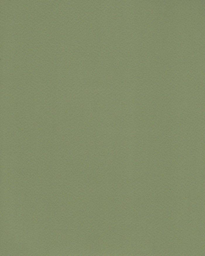 """Fabriano Tiziano #14, Moss Green, 20"""" x 26"""" 160g"""