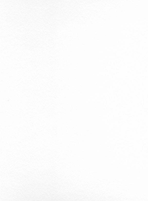 """Fabriano Unica, White 22""""x30"""" 250gsm"""