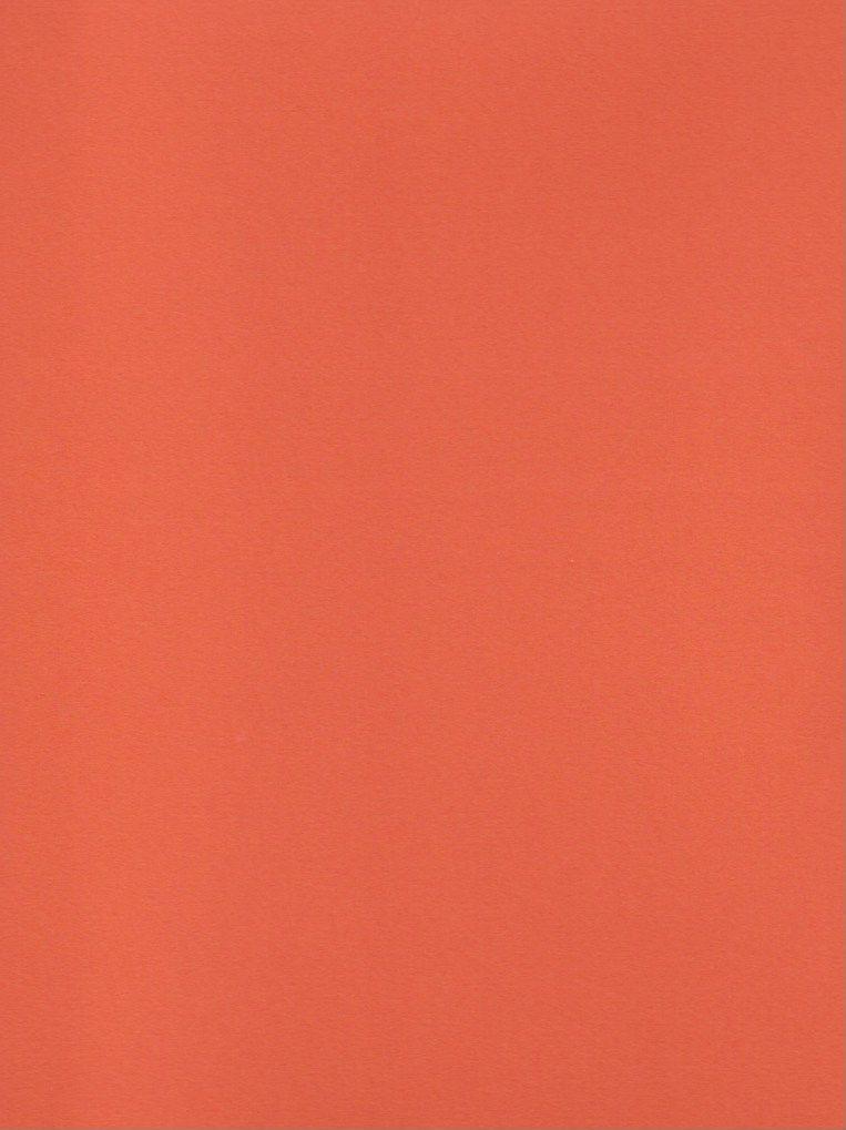 "Domestic Colorplan, 91#, Text, Mandarin, 25"" x 38"", 135 gsm"