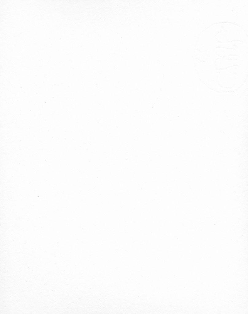 "Italy Fabriano Tiepolo, Soft White 22""x30"" 290gsm"