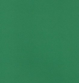"Fabriano Tiziano #37, Billiard Green, 20"" x 26"" 160g"