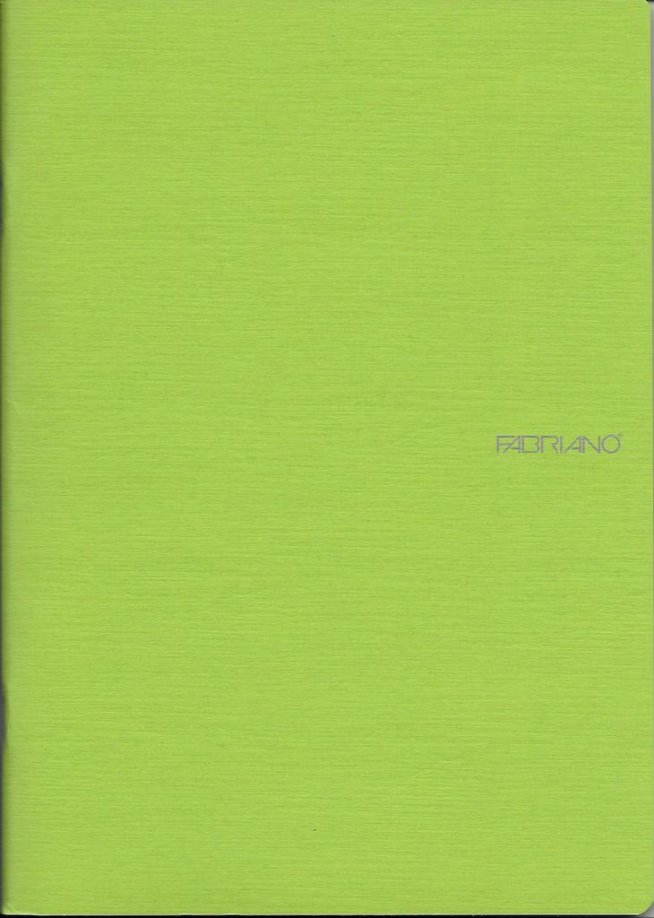 "EcoQua Blank Notebook, Lime, 8.25""x11.5"", 40 Sheets"