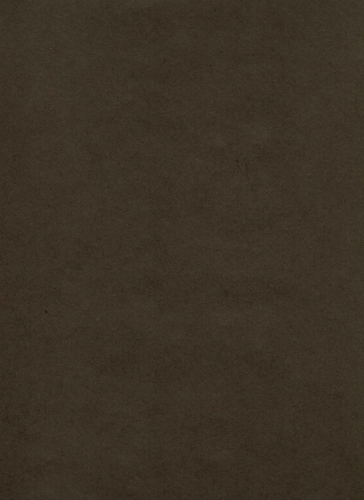 """Thailand Thai Mulberry Hickory Brown, 25"""" x 37"""""""