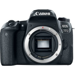 Canon Canon EOS 77D Body
