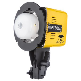 Interfit Honey Badger 320Ws Compact Flash Head