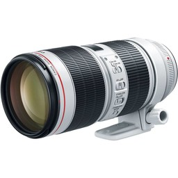 Canon EF 70-200mm f/2.8 IS III USM