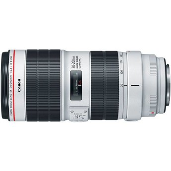 Canon Canon EF 70-200mm f/2.8 IS III USM