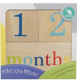 All4Ella All4Ella Milestone Blocks