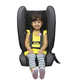 Britax SafeNSound Defenda Child Harness