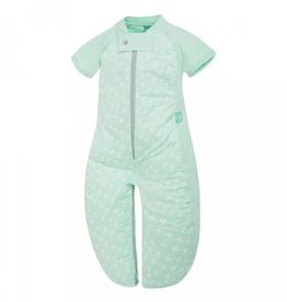 ErgoPouch ErgoPouch 1 Tog Sleep Suit Bag 3-6 Years