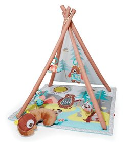 Skip Hop Skip Hop Camping Cubs Activity Gym