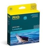 Rio Leviathan 26' Sinktip