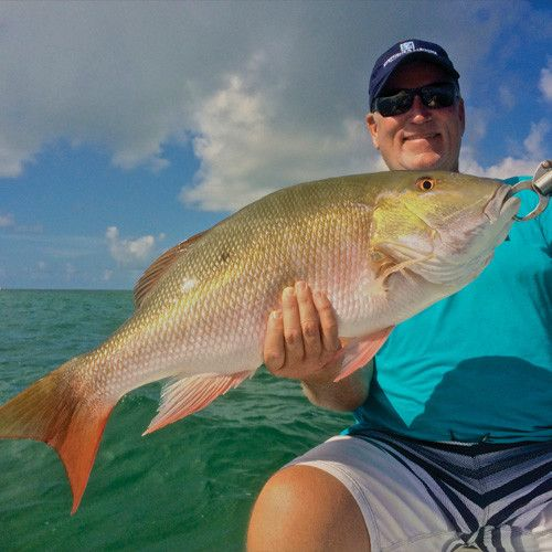 Guided Inshore Fishing (Half Day)