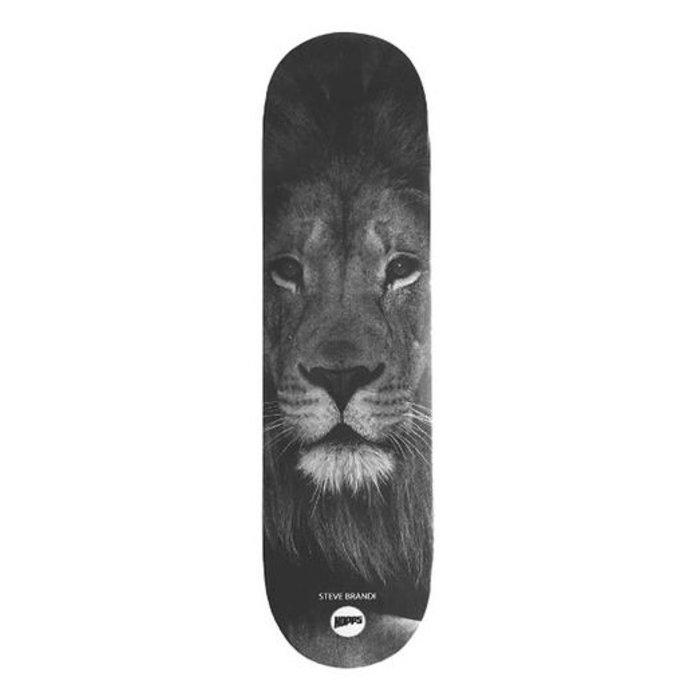 Steve Brandi Lion 8.357