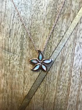Sterling rose gold necklace with white opal starfish pendant its sterling rose gold necklace with white opal starfish pendant aloadofball Choice Image